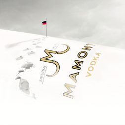 Learning from Brand Positioning Workshops : The Mamont Vodka Case